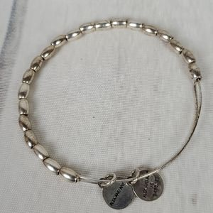 Alex and Ani Energy Adjustable Bracelet Silver